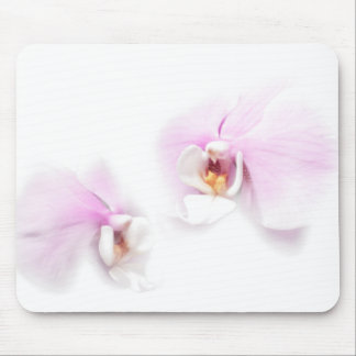 Phalaenopsis Hilo Lip Flower Duo Mouse Pad
