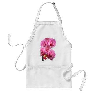 Phalaenopsis orchid adult apron