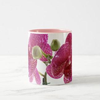 Phalaenopsis Orchid Bloom Two-Tone Coffee Mug