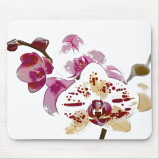 Phalaenopsis Orchid Flower Bouquet Mouse Pad