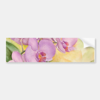 Phalaenopsis Orchid Flowers - Multi Bumper Sticker