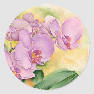 Phalaenopsis Orchid Flowers - Multi Classic Round Sticker