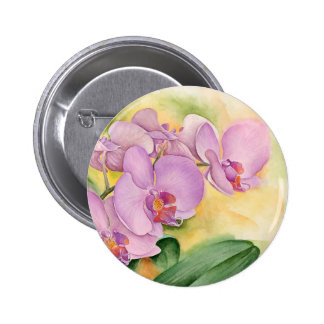 Phalaenopsis Orchid Flowers - Multi Pinback Button