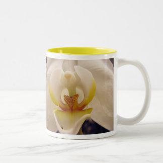 Phalaenopsis Orchid I Mug