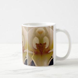 Phalaenopsis Orchid II Mug