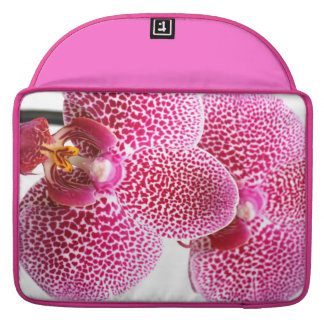 Phalaenopsis orchid sleeve for MacBook pro