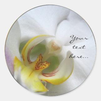 Phalaenopsis Orchid Wedding Invitation Seals Classic Round Sticker