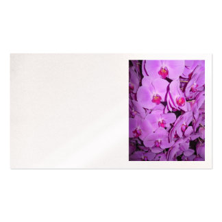 Phalaenopsis Orchids Business Card Templates