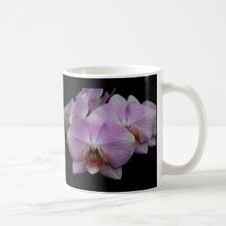 Phalaenopsis Orchids Classic White Coffee Mug