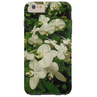 Phalaenopsis Orchids Tough iPhone 6 Plus Case