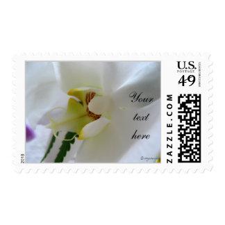 Phalaenopsis Photo Wedding Postage Personalized Postage