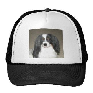 Phalène Papillon Trucker Hat