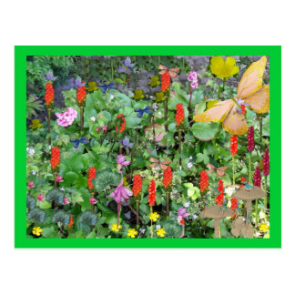 Phantasy garden postcard