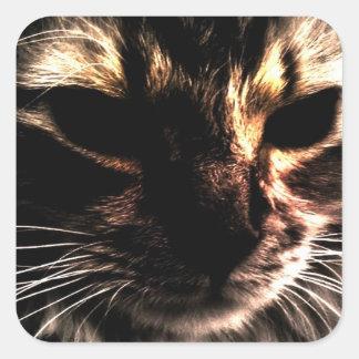 Phantom Cat Square Sticker