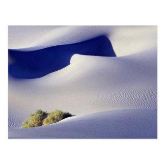 Phantom of the dune postcard