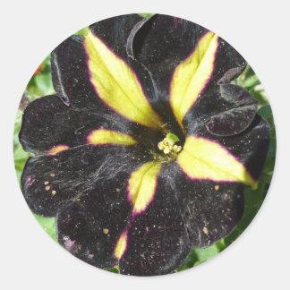 Phantom Petunia Classic Round Sticker
