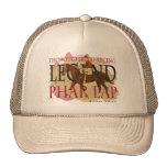 Phar Lap - Thoroughbred Horse Racing Legend Mesh Hats
