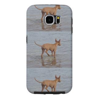 Pharaoh_Hound en water.png Fundas Samsung Galaxy S6