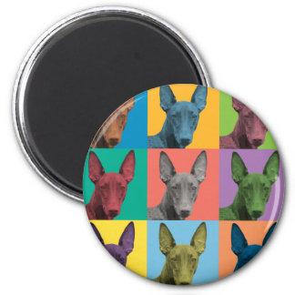 Pharaoh Hound Pop-Art 2 Inch Round Magnet