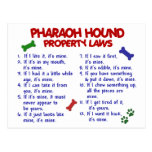 PHARAOH HOUND Property Laws 2 Post Card