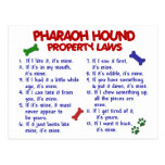 PHARAOH HOUND Property Laws 2 Postcard