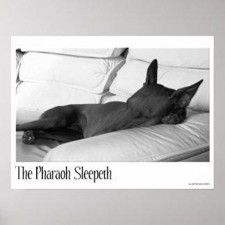 Pharaoh Hound | The Pharoah Sleepeth Poster