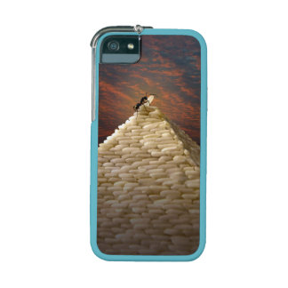 Pharaoh's Inspiration iPhone 5 Cases