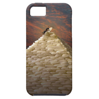 Pharaoh's Inspiration iPhone 5 Cover