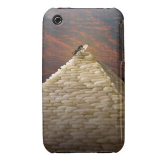 Pharaoh's Inspiration Case-Mate iPhone 3 Cases
