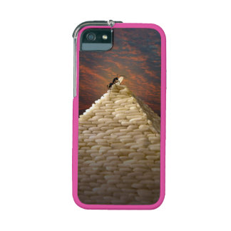 Pharaoh's Inspiration Case For iPhone 5/5S
