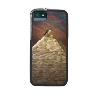 Pharaoh's Inspiration Case For iPhone 5