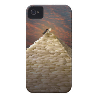 Pharaoh's Inspiration iPhone 4 Covers