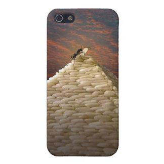 Pharaoh's Inspiration Case For iPhone SE/5/5s