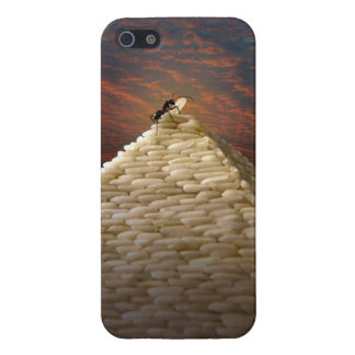 Pharaoh's Inspiration iPhone 5 Covers