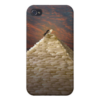 Pharaoh's Inspiration iPhone 4 Case