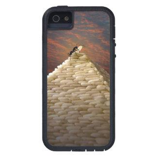 Pharaoh's Inspiration iPhone SE/5/5s Case