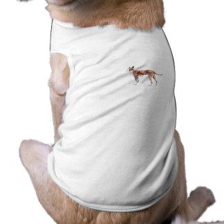 Pharoah Hound Pet Shirt