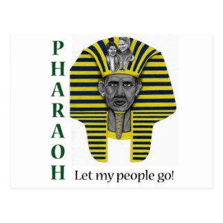 Pharoah of Healthcare Postcard