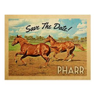 Pharr Texas Save The Date Horses Postcard