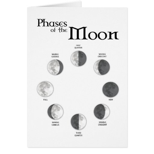 Phases of the Moon - Southern Hemisphere Card | Zazzle
