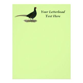 Pheasant Black Rooster Letterhead