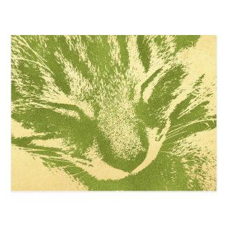 Pheasant cat post card
