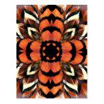 Pheasant Feather Kaleidoscope Postcard