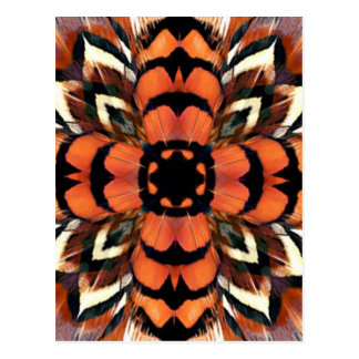 Pheasant Feather Kaleidoscope Postcard