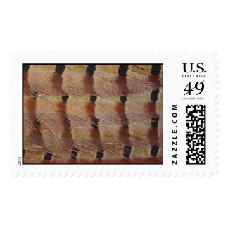 Pheasant Feathers Stamp
