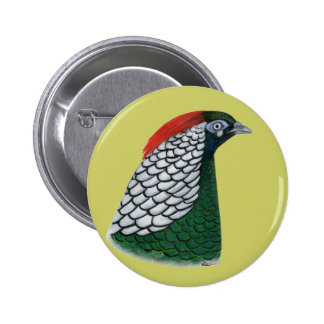 Pheasant:  Lady Amherst Head Pinback Button