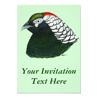 Pheasant:  Lady Amherst Rooster Card