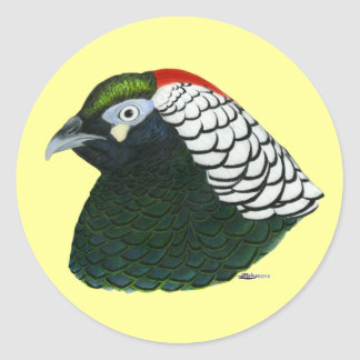 Pheasant:  Lady Amherst Rooster Classic Round Sticker