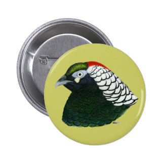 Pheasant:  Lady Amherst Rooster Pinback Button