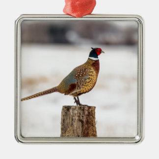 Pheasant Metal Ornament